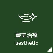 審美歯科aesthetic